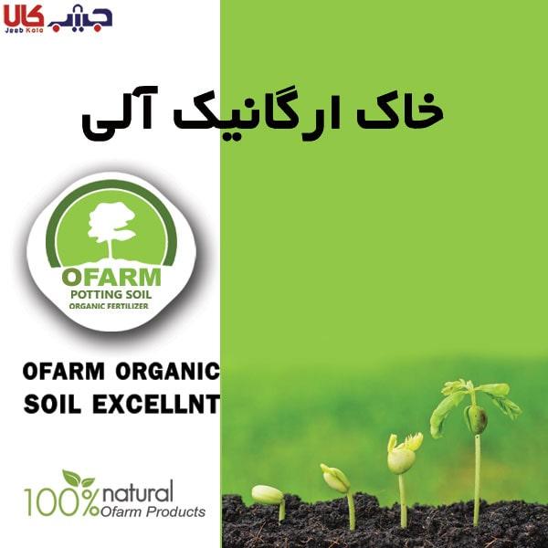 خاک ارگانیک آلی