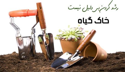خاک گیاه